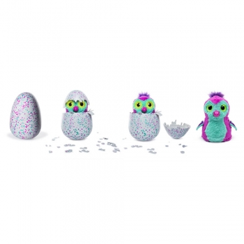 Hatchimals Pengualas Sihirli Sürpriz Yumurta 19110  İkiz Hatchimals